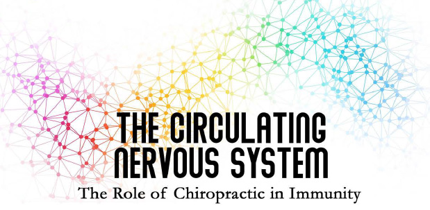 The Role of Chiropractic in Immunity